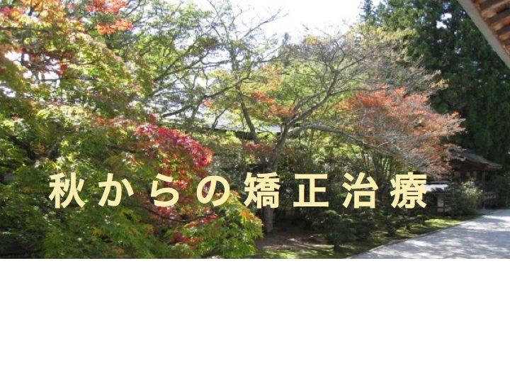 秋からの矯正治療1.jpg